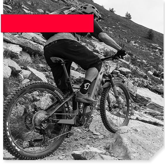 2295ccbd713 Calgary Cycle | Canada's Premier Bike Shop