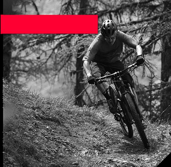 Calgary Cycle | Canada's Premier Bike Shop